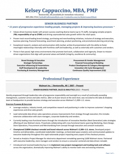 Senior Business Partner Resume